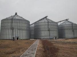 Производитель «Петелинки» объяснил отмену SPO
