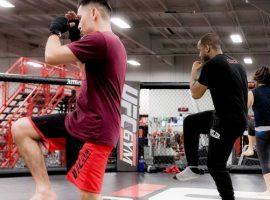 Владельцы World Class откроют в России сеть UFC Gym