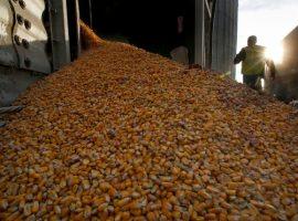 ВТБ выкупит зерновой терминал в Тамани у украинского агрохолдинга