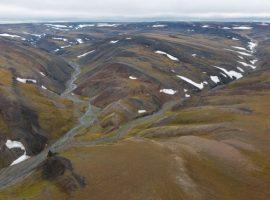 Минприроды изменило границы заповедника в Арктике для компании Босова