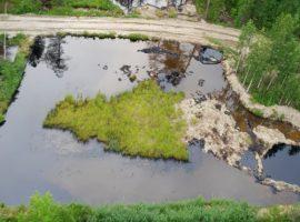 «Транснефть» заподозрила «дочку» «Роснефти» в разливе нефти в ХМАО