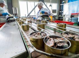 Медведев поручил поддержать производство рыбных консервов и лесных грибов